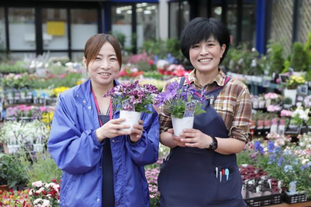ホームワイド新下関店の画像・写真